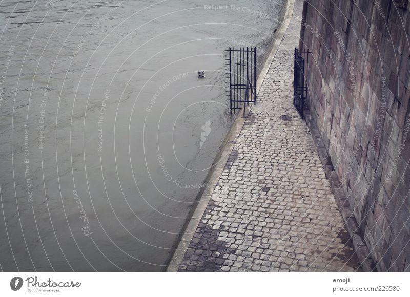 Seine Wasser Winter dunkel kalt Wand Herbst grau Mauer Traurigkeit Beton offen trist Fluss Tor Bürgersteig Flussufer