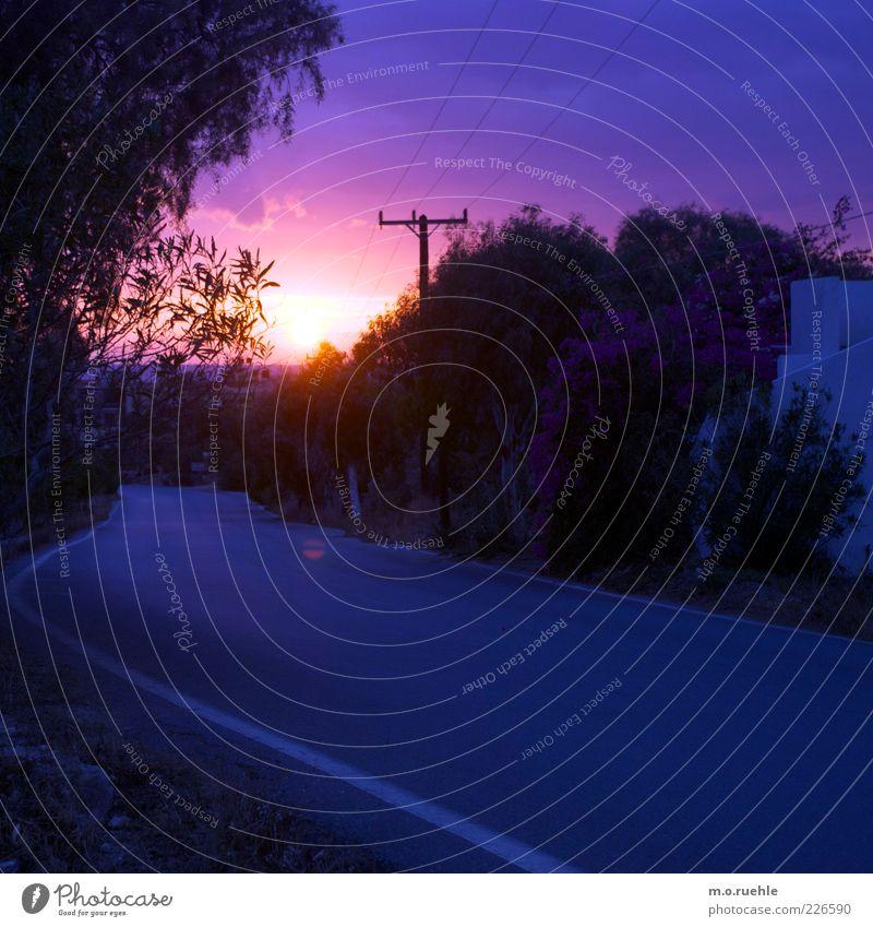 farbe der saison Umwelt Natur Landschaft Himmel Sonne Sonnenaufgang Sonnenuntergang Sonnenlicht Sommer Klima Schönes Wetter Pflanze Baum Straße blau violett