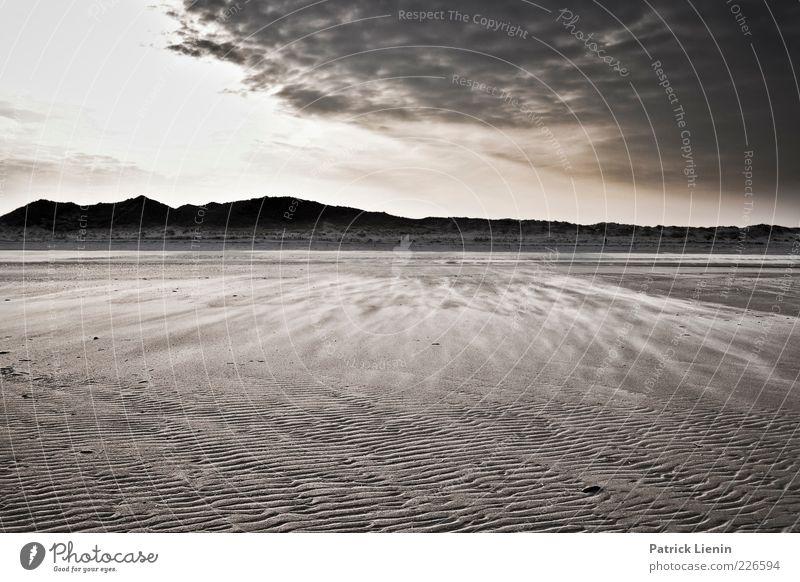 and the day turned black Umwelt Natur Landschaft Urelemente Sand Luft Himmel Wolken Gewitterwolken Klima Klimawandel Wetter schlechtes Wetter Wind Küste Strand