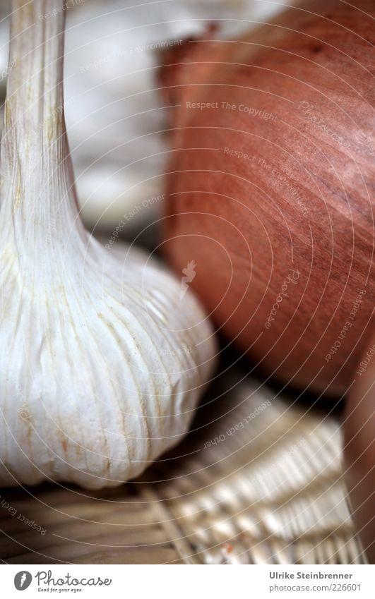 Allium Lebensmittel Gemüse Zwiebel Knoblauch Knolle Ernährung liegen Gesundheit nachhaltig rund braun weiß Korb Hülle Schalenfrucht Zwiebelschale