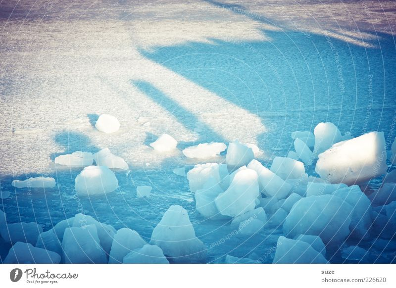 Auf, ins Licht Umwelt Winter Klima Eis Frost Schnee Hafen kalt blau weiß Eiswürfel Schneedecke gefroren Eisscholle Packeis Sonnenstrahlen Bruchstück Eisblock
