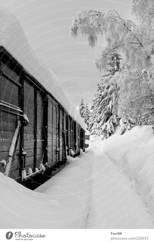 Schneeexpress Winter Eis Frost Baum Menschenleer Bahnhof Wagon Oldtimer Eisenbahn Güterzug Bahnsteig Holz Stahl Rost schwarz weiß Begeisterung entdecken