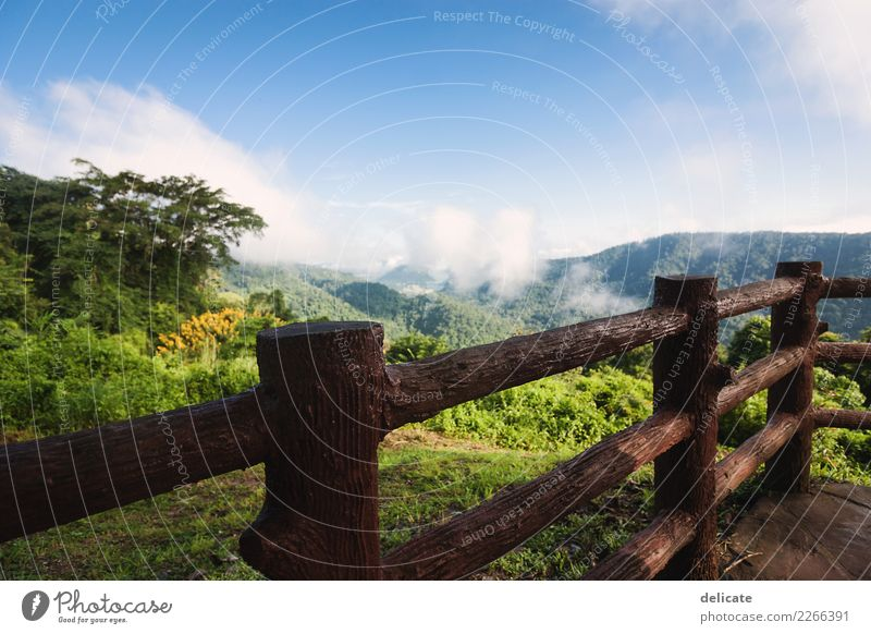 Khao Yai Himmel Natur Ferien & Urlaub & Reisen Pflanze Sommer Landschaft Baum Erholung Wolken Ferne Umwelt Gras Tourismus Freiheit Ausflug wandern