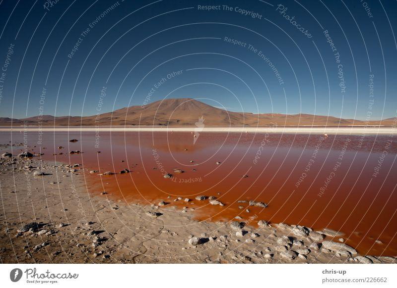 Rotes Wasser, Lagune Ferne Freiheit Berge u. Gebirge Umwelt Natur Landschaft Erde Sand Seeufer dreckig blau braun rot Erholung Ewigkeit Farbe Bolivien