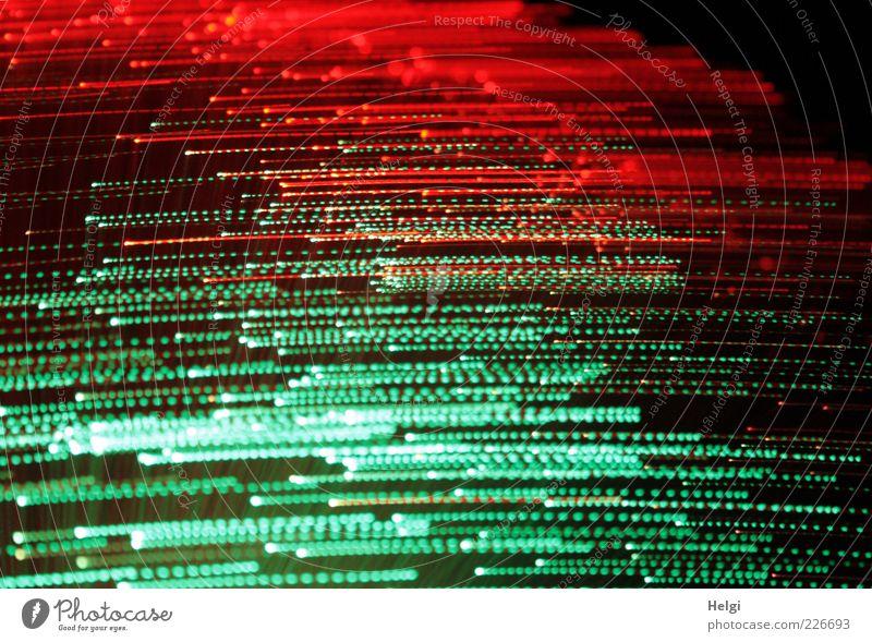 wuuuuuusch..... grün rot schwarz Farbe Bewegung Lampe Linie Beleuchtung ästhetisch verrückt Geschwindigkeit einzigartig einfach außergewöhnlich leuchten Kreativität