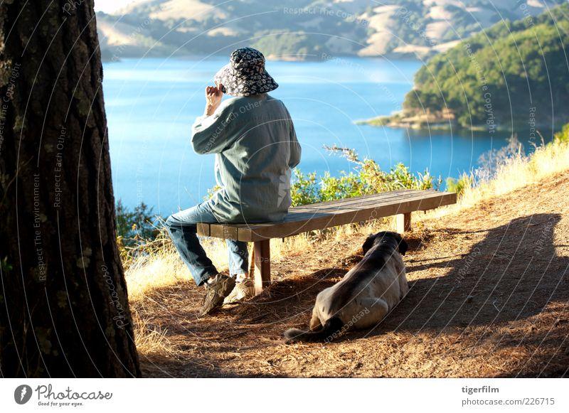 mit Blick auf einen See Senior Dame Frau alt Hund ruhen Stausee Kalifornien Schönes Wetter Sonnenlicht Nachmittag Stock kleben Spazierstock Bank blau Hügel Hut