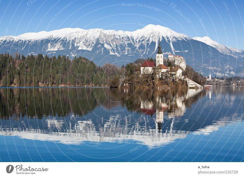 sunshine lake Natur Landschaft Winter Schönes Wetter Alpen Berge u. Gebirge Gipfel Schneebedeckte Gipfel Küste Seeufer Insel Bled Dorf Kirche Bauwerk