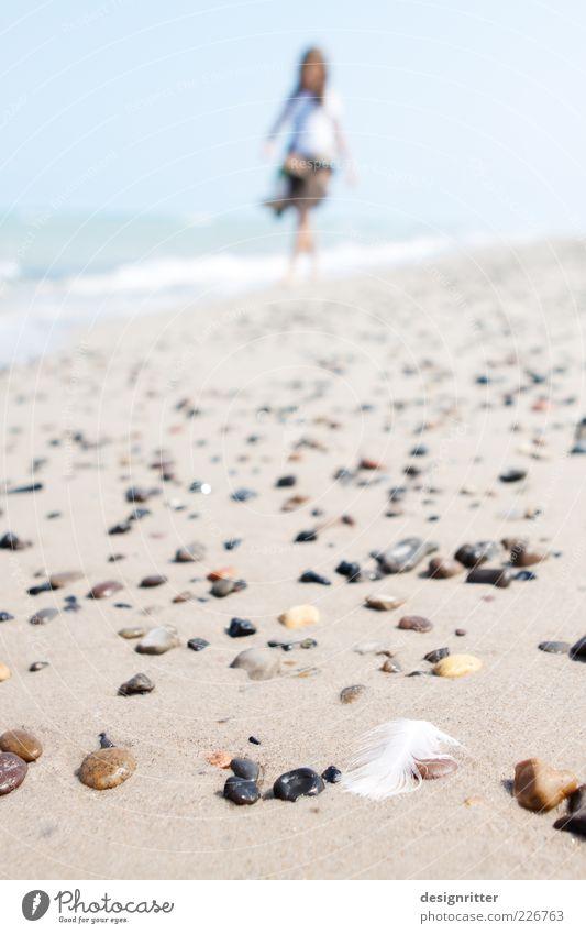 Nordischer Sommertraum Sonne Sommer Ferien & Urlaub & Reisen Strand Meer ruhig Ferne Erholung Freiheit Sand Stein Küste hell Wellen laufen wandern