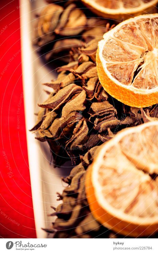 Zapfenstreich schön rot Orange Frucht natürlich Dekoration & Verzierung trocken Duft getrocknet Anschnitt Tannenzapfen Zitrusfrüchte Trockenfrüchte
