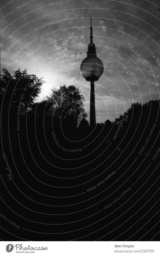 berlin so nah Himmel Baum Sommer schwarz dunkel Park hoch groß Hamburg Turm Sträucher Laterne analog Schönes Wetter Wahrzeichen Stadtzentrum