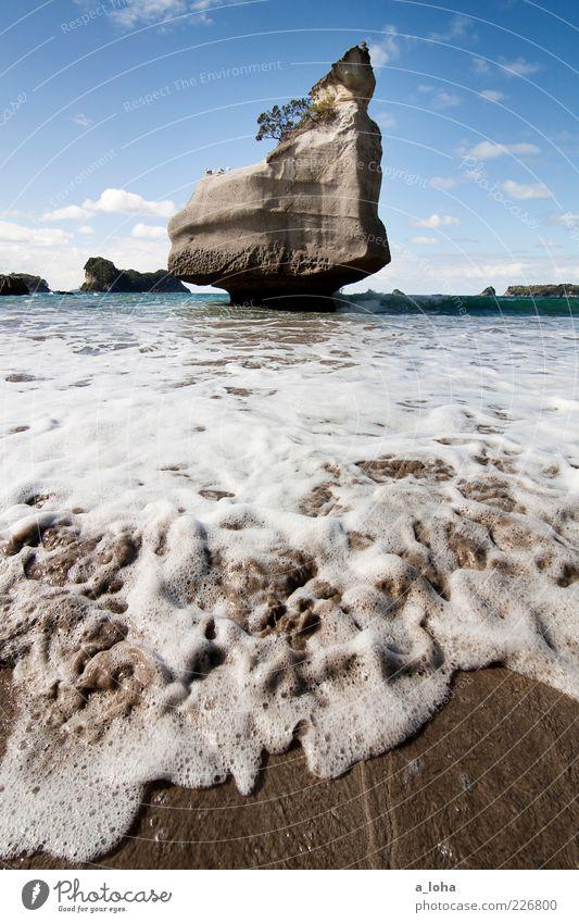cathedral cove Natur Urelemente Sand Wasser Himmel Wolken Schönes Wetter Felsen Wellen Küste Strand Meer Bewegung Bekanntheit kalt nass Fernweh Einsamkeit rein