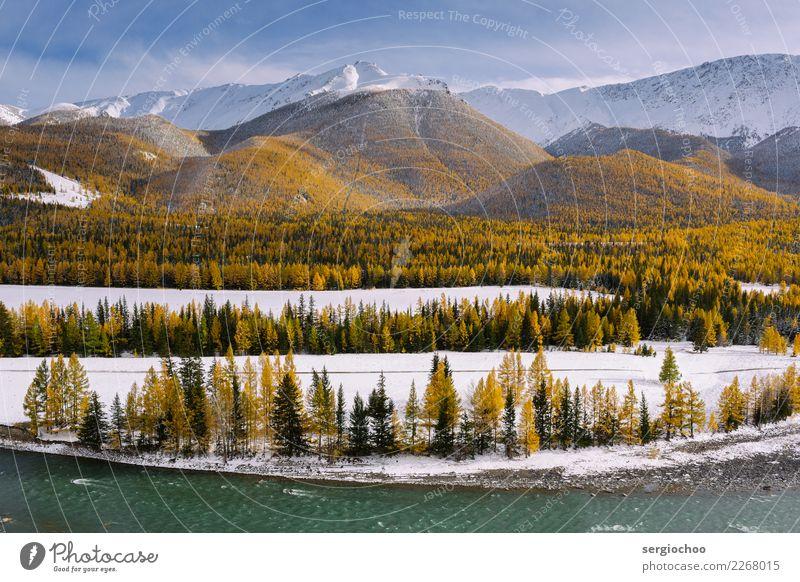 neun Schichten der Natur schön Wasser Landschaft Baum Wolken Winter Wald Berge u. Gebirge gelb Herbst kalt Wiese Schnee Felsen Linie