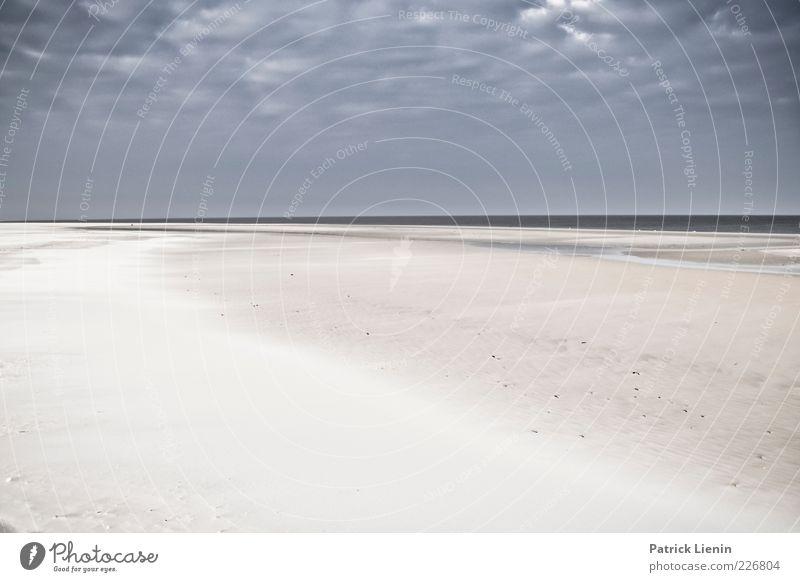 walk at the beach Umwelt Natur Landschaft Urelemente Erde Sand Luft Wasser Himmel Wolken Gewitterwolken Klima Wetter schlechtes Wetter Wind Küste Strand Ostsee