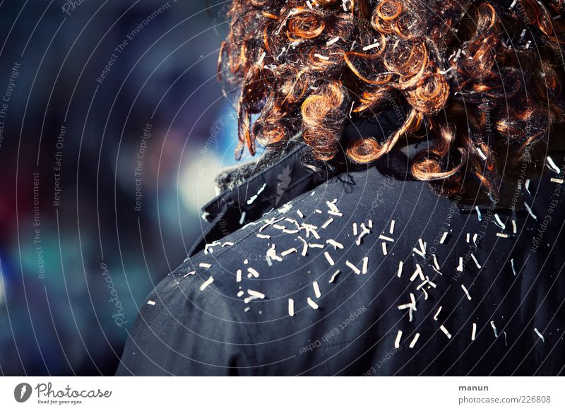 Fasching Lifestyle Veranstaltung Feste & Feiern Karneval Mensch Leben Haare & Frisuren Rücken 1 Accessoire Perücke Afro-Look Konfetti beobachten stehen