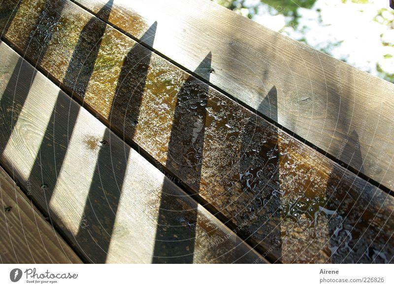 angespitzt! alt grün weiß kalt Holz grau Linie braun hell Spitze nass bedrohlich Schutz Balkon Pfeil eckig