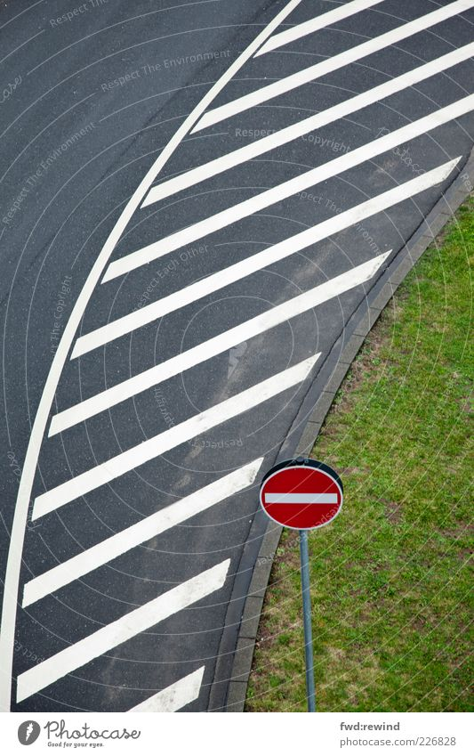Linienführung grün Straße Wiese kalt grau Gras Linie nass Schilder & Markierungen modern ästhetisch trist Streifen fahren Rasen Hinweisschild