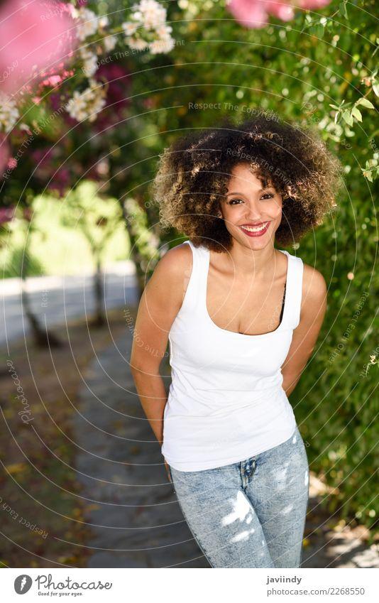 Junge schwarze Frau mit Afro-Frisur lächelnd im Stadtpark Lifestyle Stil schön Haare & Frisuren Sommer Mensch feminin Junge Frau Jugendliche Erwachsene 1