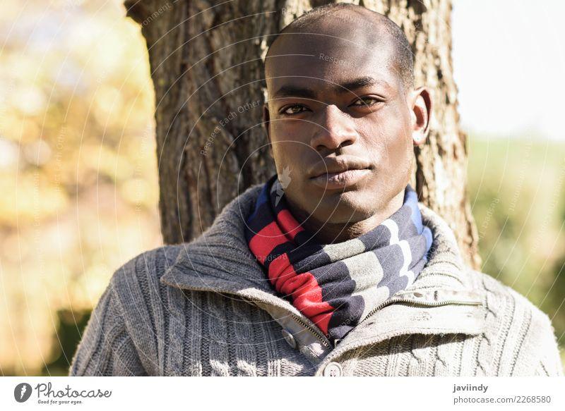 Junger attraktiver schwarzer Mann in Freizeitkleidung im Stadtpark schön Mensch maskulin Junger Mann Jugendliche Erwachsene 1 18-30 Jahre Straße Bekleidung Hemd