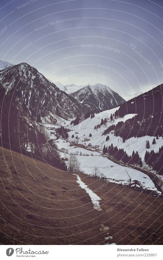 Talblick Himmel Natur Pflanze Wolken Winter Wiese kalt Schnee Berge u. Gebirge Umwelt Landschaft Gras Luft Feld Erde Eis