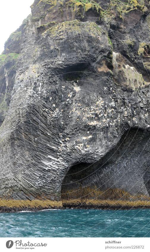 Halber Breitmaulfrosch Natur Wasser Meer schwarz Berge u. Gebirge Küste außergewöhnlich Felsen wild Urelemente Island steil Vulkan schlechtes Wetter Höhle Naturphänomene