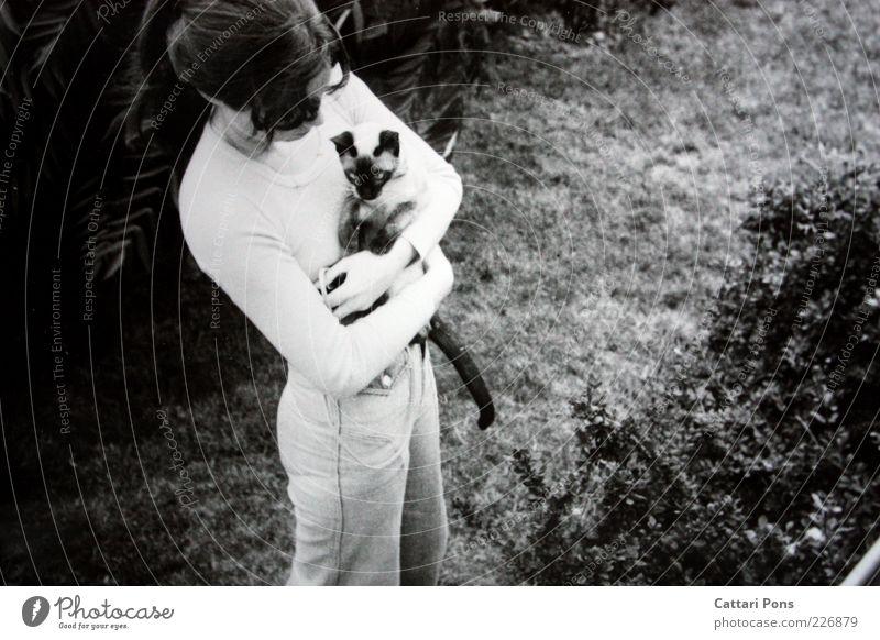 Happy End Mensch Natur Jugendliche Tier Wiese feminin Katze stehen Sträucher retro festhalten Haustier Junge Frau Schwarzweißfoto Tierliebe Frau