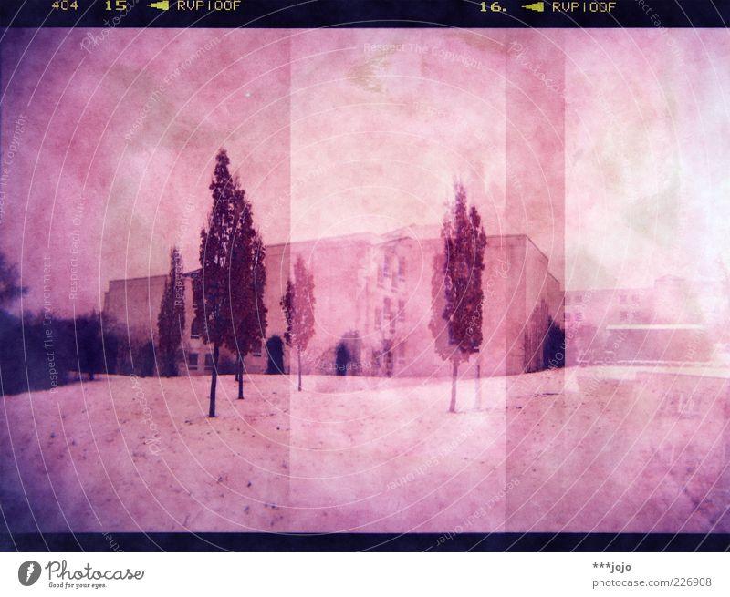 holgarama. Stadt Baum Haus Wiese kalt Schnee Landschaft Park rosa modern Ecke Ziffern & Zahlen analog Rahmen Doppelbelichtung Schneelandschaft