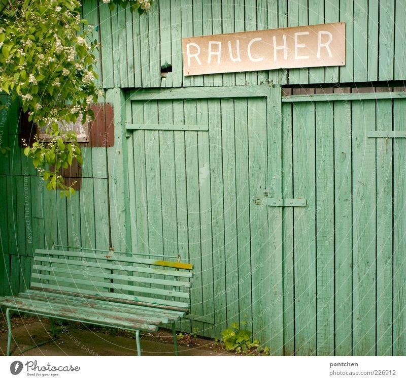 ein Platz für Raucher grün Baum Blatt Wand Holz Blüte Mauer Schilder & Markierungen Schriftzeichen Bank Schutz Hütte Sitzgelegenheit Holzbrett Zweige u. Äste