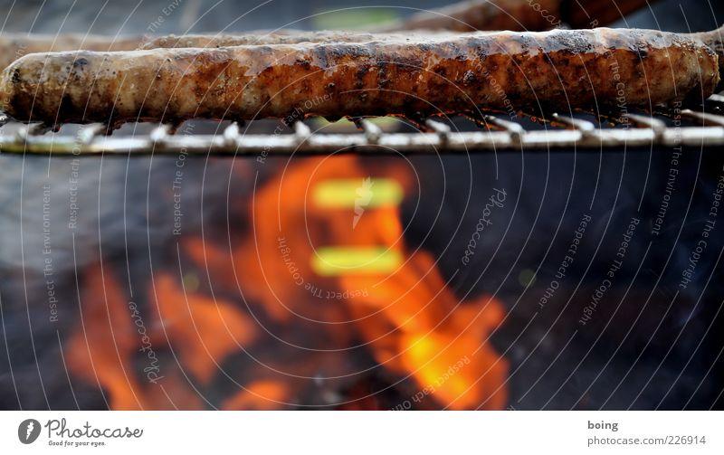 Wurscht Fleisch Wurstwaren Ernährung Freizeit & Hobby lecker Grill Grillen Grillkohle Grillrost Bratwurst Farbfoto Außenaufnahme Nahaufnahme Textfreiraum unten
