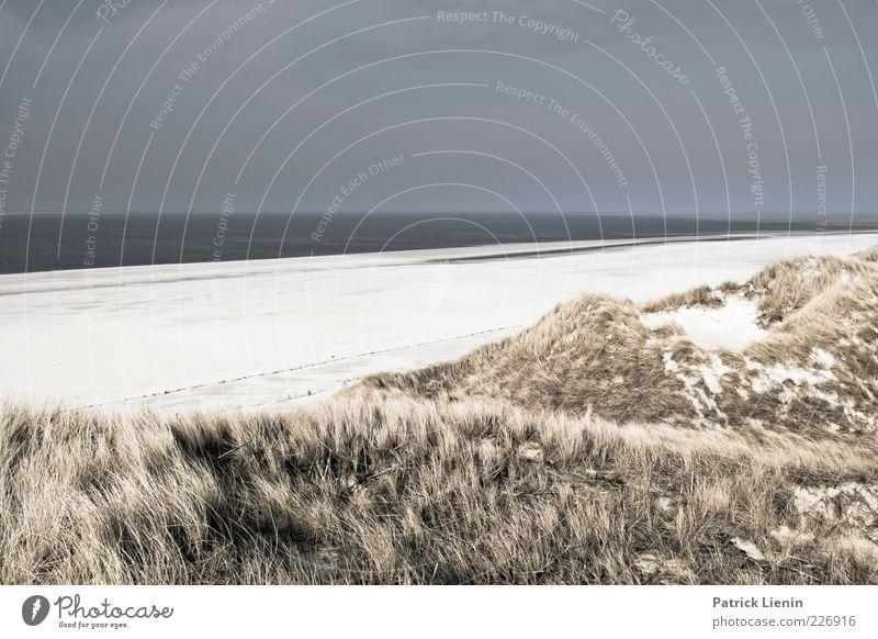 going all the way Himmel Natur schön Strand Meer Wolken Ferne Erholung dunkel Umwelt Landschaft grau Gras Sand Küste Luft