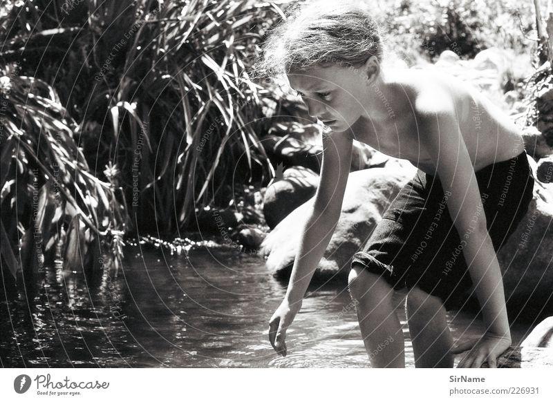 150 [Kaulquappenfänger] Kind Jugendliche Ferien & Urlaub & Reisen schön Sonne Umwelt Gras Spielen Schwimmen & Baden natürlich Kindheit frei lernen ästhetisch Abenteuer beobachten