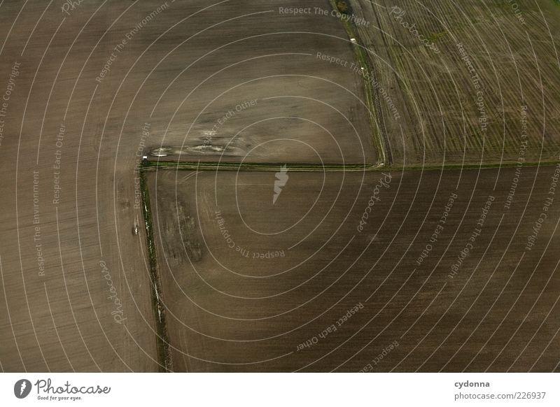 Geradeaus, Rechts abbiegen und an der nächsten Links Natur ruhig Umwelt Landschaft Wege & Pfade braun Erde Feld Wandel & Veränderung einzigartig Aussicht Fußweg Richtung Ackerbau Knick Zickzack