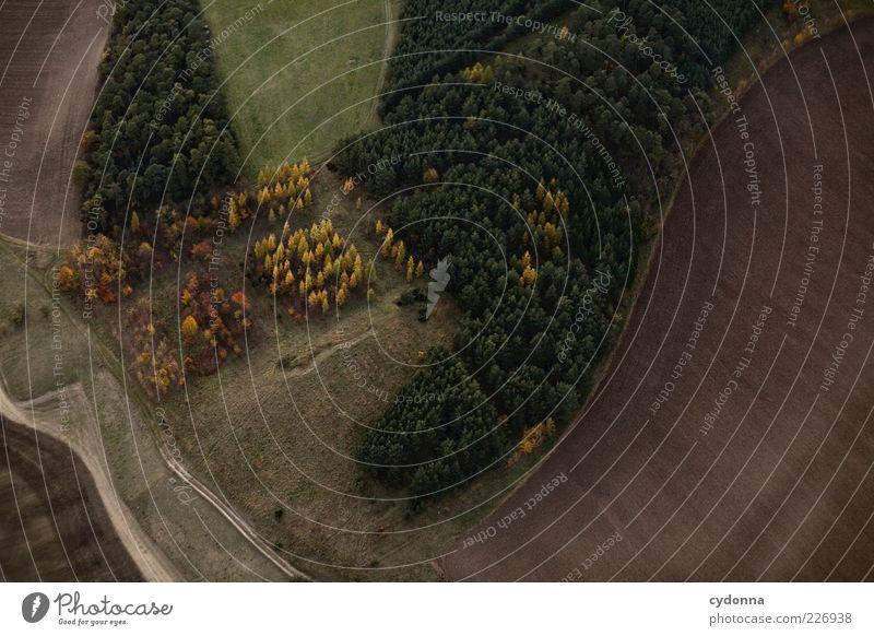 Buntes Eck Natur schön ruhig Wald Herbst Umwelt Freiheit Landschaft Wege & Pfade Feld einzigartig Landwirtschaft Aussicht Forstwirtschaft Vogelperspektive