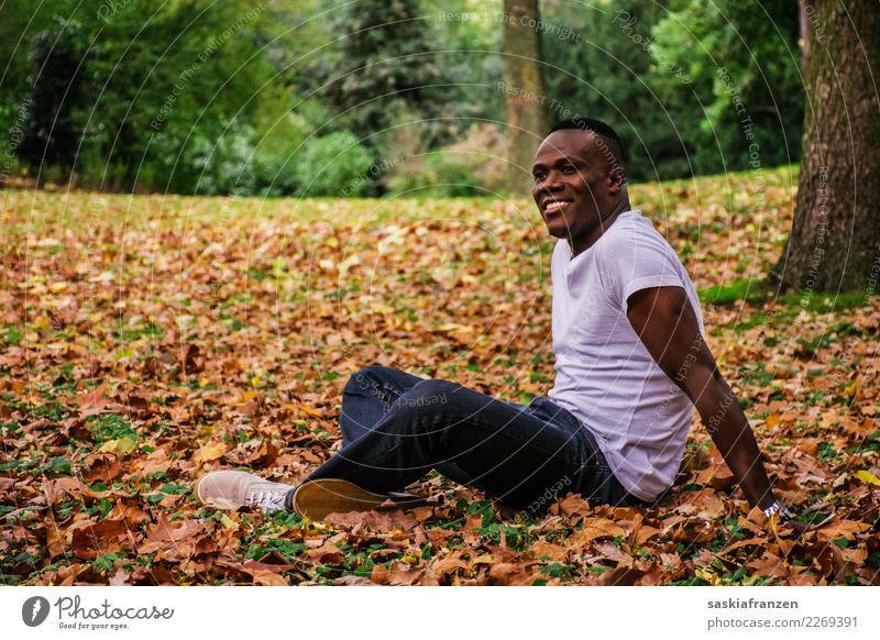 Park IV. Zufriedenheit Ferien & Urlaub & Reisen Mensch maskulin Junger Mann Jugendliche Erwachsene Kultur Natur Herbst Blatt Jeanshose liegen träumen sportlich