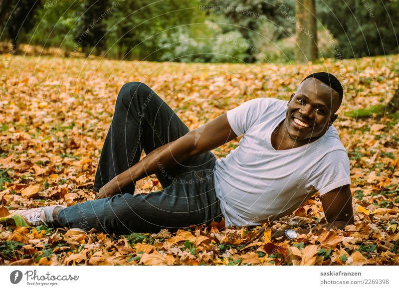 Park II. Mensch Natur Ferien & Urlaub & Reisen Mann Junger Mann Blatt Reisefotografie Herbst natürlich Zufriedenheit maskulin liegen Kultur Model Jeanshose