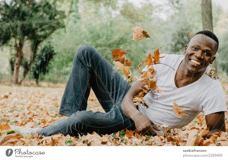 Kulturschock I Mensch Natur Jugendliche Mann Pflanze schön Junger Mann Blatt Erwachsene Lifestyle Herbst Glück Garten Mode Zufriedenheit maskulin