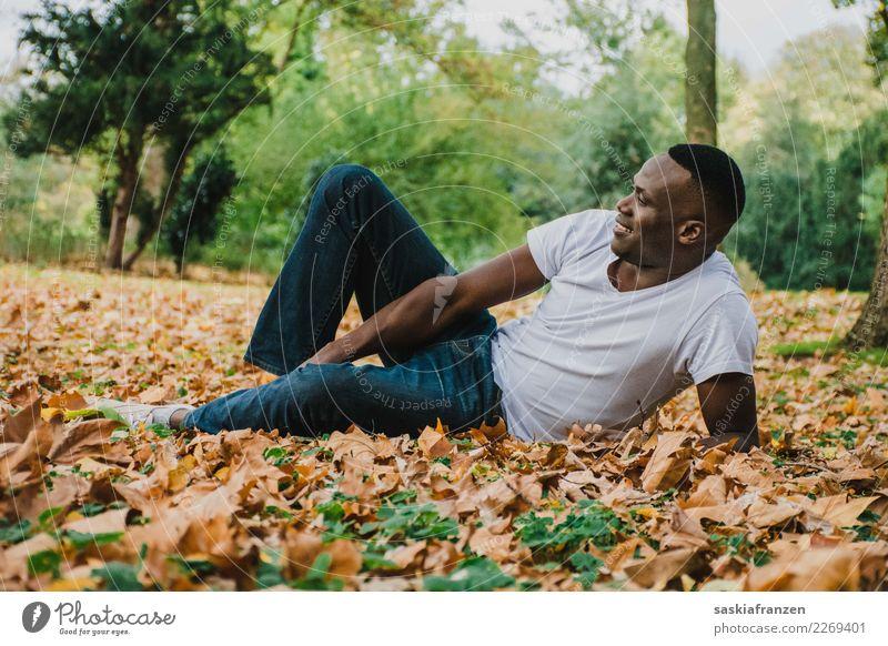 Park I. Mensch Natur Ferien & Urlaub & Reisen Mann Junger Mann Blatt Reisefotografie Herbst natürlich Zufriedenheit maskulin liegen Kultur Model Jeanshose