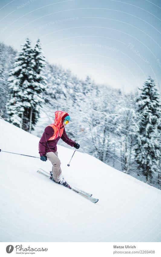 Lady on Ski Frau Mensch Natur Jugendliche Junge Frau Landschaft Wald Winter Berge u. Gebirge Erwachsene Umwelt feminin Schnee Sport Bewegung Freizeit & Hobby