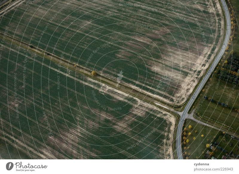Sanfter Schwung Natur grün schön Baum ruhig Straße Freiheit Umwelt Landschaft Wege & Pfade Feld einzigartig Kurve Biologische Landwirtschaft gekrümmt Landstraße