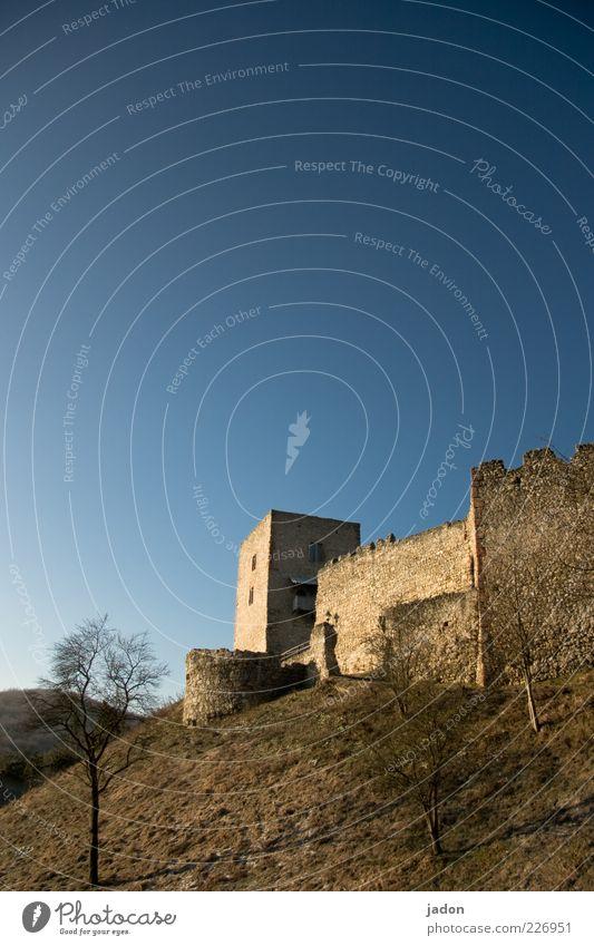 kastl alt Baum Wand Architektur Gras Mauer Stein Gebäude braun Ausflug Tourismus ästhetisch Hügel Bauwerk Denkmal