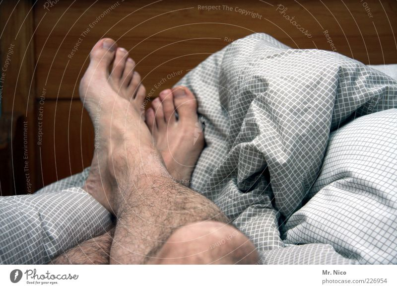 danach Wohlgefühl Zufriedenheit Erholung ruhig maskulin Haut Beine Fuß Behaarung schlafen Müdigkeit Siesta Zehen Bett Bettwäsche Barfuß Langschläfer gekreuzt