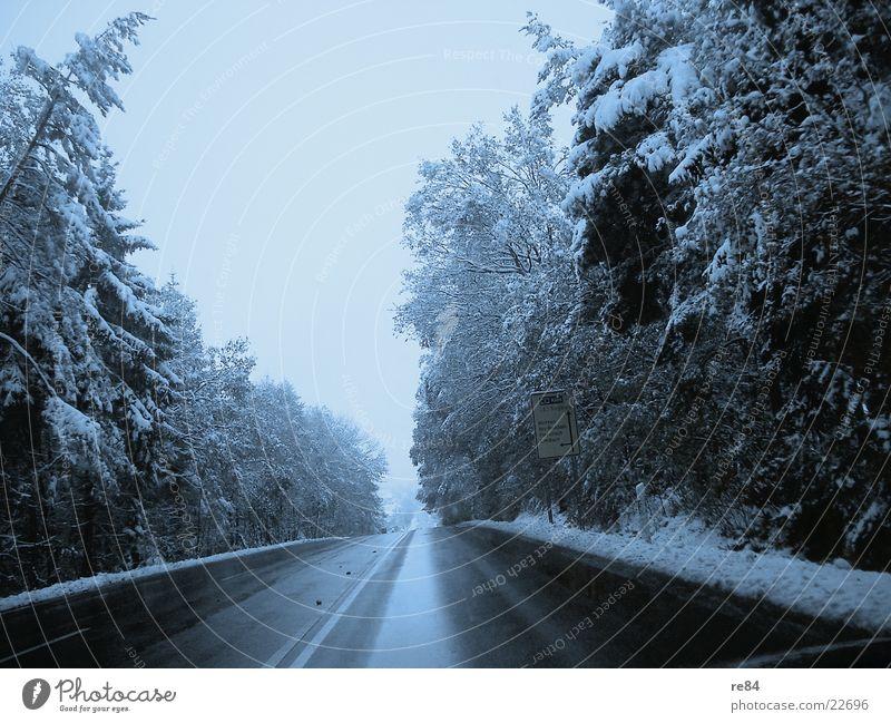 country road take me home....to westerwald Baum Winter Ferien & Urlaub & Reisen Wald kalt Berge u. Gebirge Verkehr fahren Frost Streifen Autobahn gefroren Seite frieren Verkehrswege Am Rand