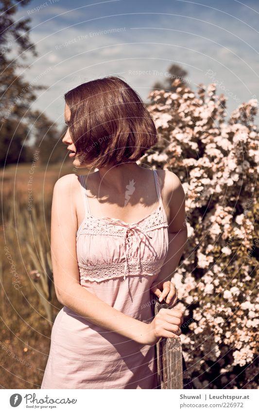 Priscilla Molesworth Mensch Jugendliche schön Erwachsene feminin Gefühle Blüte rosa wild ästhetisch außergewöhnlich Sträucher Romantik Kleid beobachten
