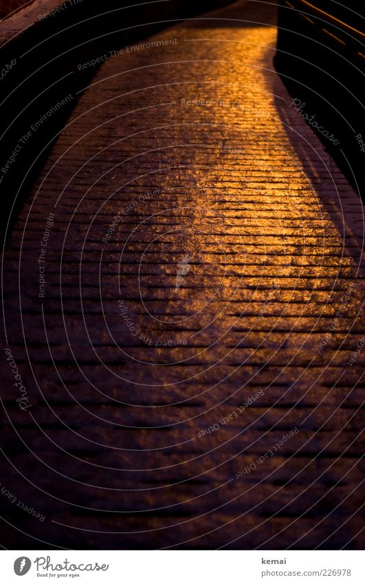 Glatter Weg Winter schwarz gelb dunkel kalt Holz Wege & Pfade Eis glänzend Brücke gefährlich Frost Fußweg Verkehrswege Glätte Nacht