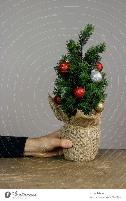 Sparbäumchen Feste & Feiern Weihnachten & Advent Hand Finger festhalten kaufen sparen Armut einfach retro grau bescheiden sparsam Einsamkeit Verbitterung