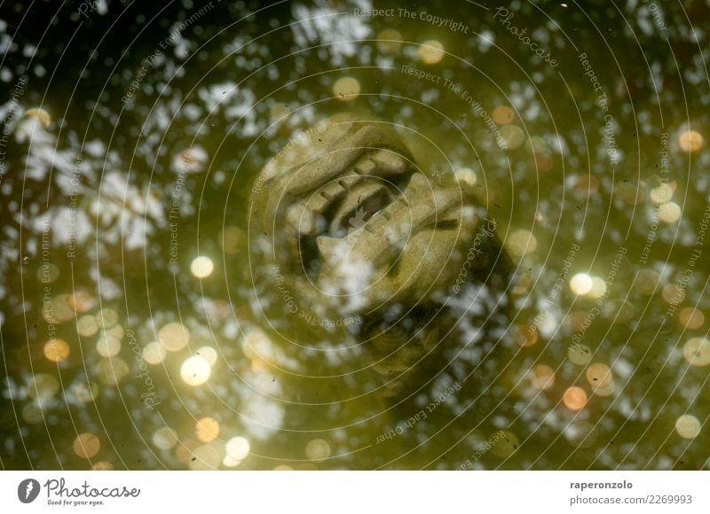shiny Stein Wasser nass gold grün silber Glück Reichtum Schutz Brunnen Wunschbrunnen wünschen Geld werfen Reflexion & Spiegelung blingbling Drache reflektion