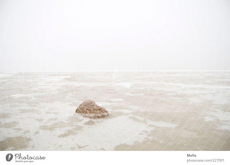Eis bricht Stein Umwelt Natur Landschaft Urelemente Winter Klima Klimawandel Wetter Nebel Frost Küste Nordsee Meer hell kalt Einsamkeit Ferne gefroren Farbfoto
