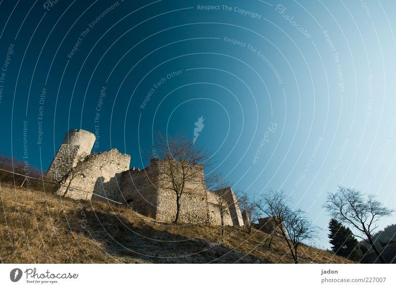 kuschelburg Himmel alt Baum Wiese Wand oben Architektur Mauer Stein Gebäude Fassade Sicherheit Turm Vergänglichkeit Hügel