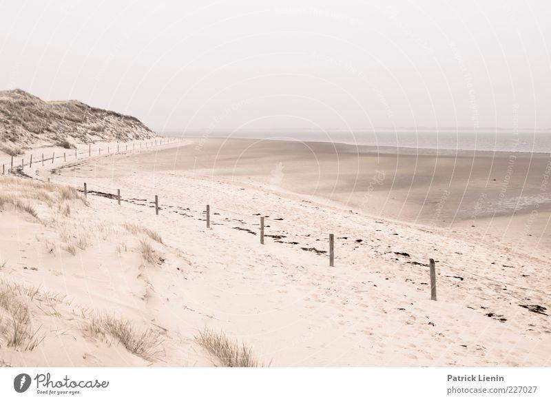 Ebbe Umwelt Natur Landschaft Urelemente Sand Himmel Wetter schlechtes Wetter Küste Nordsee Meer weich Amrum Zaun geschwungen Düne Strand Erholung ruhig