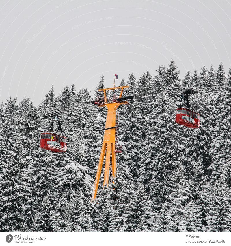 gondelbahn Technik & Technologie Umwelt schlechtes Wetter Schnee Wald Berge u. Gebirge kalt Seilbahn Gondellift Winter Winterurlaub Wintersport Winterstimmung