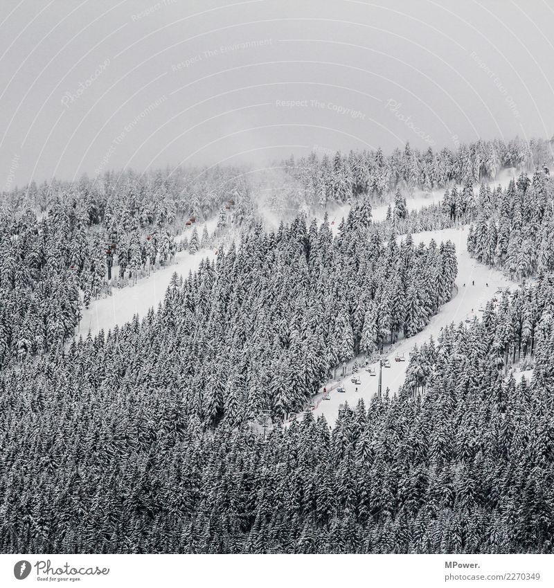 skigebiet Umwelt Wolken Winter schlechtes Wetter Nebel Schnee Wald Berge u. Gebirge kalt Winterurlaub Winterstimmung Skigebiet Skilift Skipiste Farbfoto